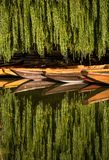 Reflection of punting boats in the Neckar River. Moored wooden punting boats are reflected in the still water of the River Neckar in Germany underneath stock photography