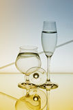 Reflection and Refraction Royalty Free Stock Images