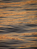 Reflection, ripple on gold sea. Reflection of light in the sunset on gold sea Stock Photo