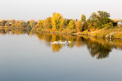 Reflection in the river. Autumn landscape Stock Images