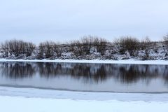 Freezing river. Reflection of river bank in freezing water royalty free stock photo