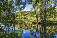 Reflection in the river Tauber in lovely Tauber valley Stock Images