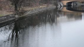 Reflection in a river. Reflection of trees and bridge in a river stock video footage