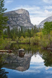 Reflection in a river in yosemite national park Royalty Free Stock Photos