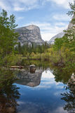 Reflection in the river of yosemite national park Stock Images