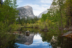 Reflection in the river in yosemite national park Royalty Free Stock Photo