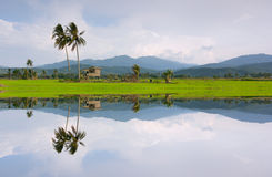 Reflection of a rural scenery in Kota Marudu, Sabah, East Malaysia Royalty Free Stock Photos