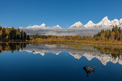 Reflection of the Scenic Tetons in fall Royalty Free Stock Photos