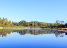 Reflection See-Wald Stockfoto