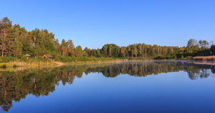 Reflection See-Wald Lizenzfreie Stockfotografie