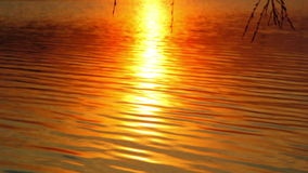 Reflection of the setting sun in the water. Evening landscape. Sunset over the river. Waves on water. Stock Images