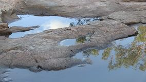 Reflection of sky and eucalyptus in puddles on pink granite. stock video footage