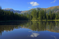 Reflection on Smreczynski lake in Koscieliska Valley, Tatras Mountains in Poland Royalty Free Stock Photos
