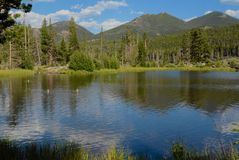 Reflection at Sprague Lake, Rocky Mountain National Park. Mountain reflection on Sprague Lake in Rocky Mountain National Park stock image