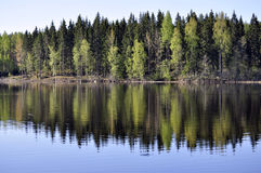 Reflection on still lake Stock Image