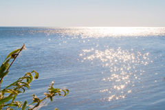 Reflection of the sun in the sea. A reservoir Royalty Free Stock Photos