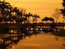 Reflection of Sunset. Reflection of golden sky on a lake in a botanical garden Stock Photography