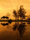Reflection of Sunset. Reflection of golden sky on a lake in a botanical garden Stock Image