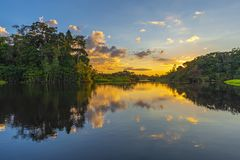 Amazon Rainforest Sunset Reflection, Ecuador stock photography
