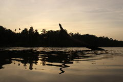 Reflection. Of sunset in the water. A bare trunk of coconut palm lean in to the river. Landscape photography stock images