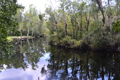 Reflection at Thomas Creek Dock Stock Photos