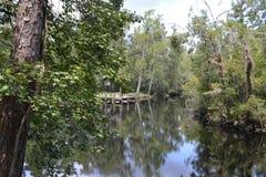 Reflection at Thomas Creek Dock Stock Photo