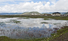 Reflection in Tibet. Perfect clouds reflect in the watery marshes of Zhongdian in northern Yunnan province in China Royalty Free Stock Photos