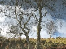 Reflection of a tree and hillside blurred by rippling water with blue cloudy sky. A reflection of a tree and hillside blurred by rippling water with blue cloudy royalty free stock photo