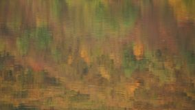 Reflection of Trees. Autumn forest reflected in the water stock video