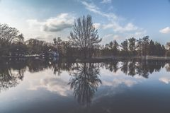 Reflection of Trees on Body of Water Stock Photo