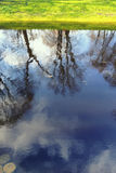 Reflection of trees in the city pond with green shore Royalty Free Stock Photos