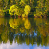 Reflection of trees in lake Stock Image