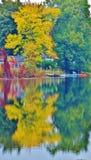 Reflection of trees onto pond. Stock Photo