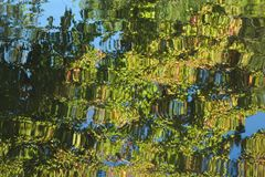 Tree reflex on river sight royalty free stock photos