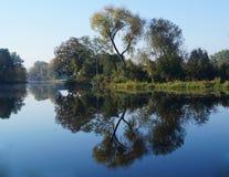 Reflection. Stock Image