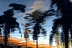 Reflection of Trees on Ripple Water Royalty Free Stock Image
