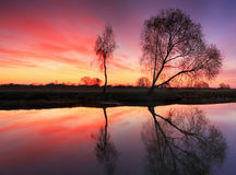 Reflection of trees in river. At dawn Stock Photos