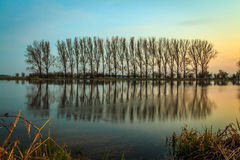 Reflection of trees in water. Landscape photography Stock Photography