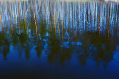 Reflection of trees on water. Reflections on blue water in a sunny day Stock Photos