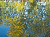 Reflection of trees on the water surface. Background. Reflection of trees on the water surface royalty free stock photos