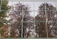 Reflection of trees in windows Stock Photography