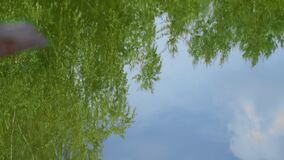 Reflection in water of foliage on trees and blue cloudy sky, waves on water