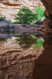 Reflection in the water - Hunter Canyon Hiking Trail Moab Utah Royalty Free Stock Image