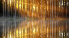 Reflection, Water, Nature, Light Royalty Free Stock Photo