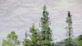The reflection in the water of nature. Reflection of trees in water of a clear mountain lake stock video