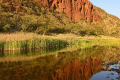 Reflection in Water Near Glen Helen Gorge. Royalty Free Stock Photos