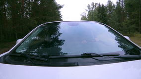Reflection in Windscreen. Car drives through forest. On-board-camera. stock video