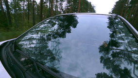 Reflection in Windscreen. Car drives through forest. On-board-camera. stock video footage