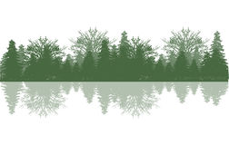 Reflection wood and tree Royalty Free Stock Photos