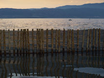 Reflection of the wooden fence Royalty Free Stock Images